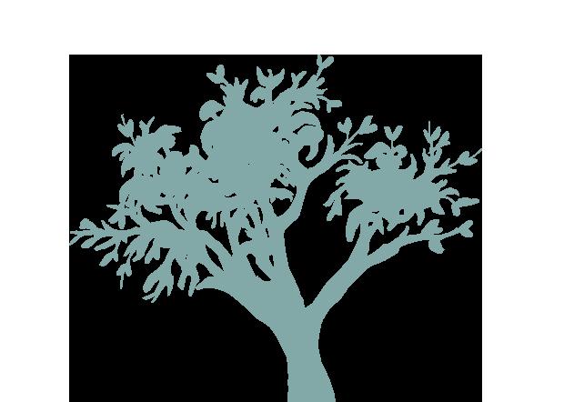 WordPress onderhoudspakketten pagina - illustratie boom