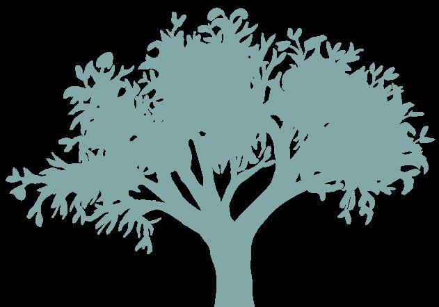 Illustratie boom op de Wat is WordPress pagina